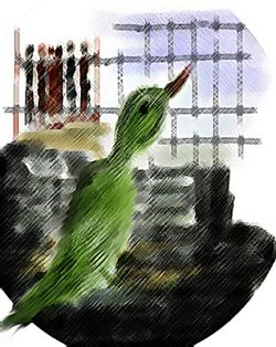 The Parrot's Tale: Translation of A Short Story By